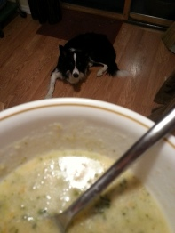 yummy soup boomer would like to try